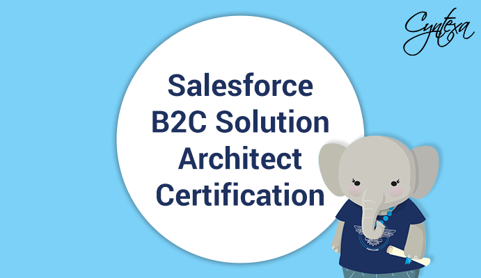 Salesforce B2C Solution Architect Certification